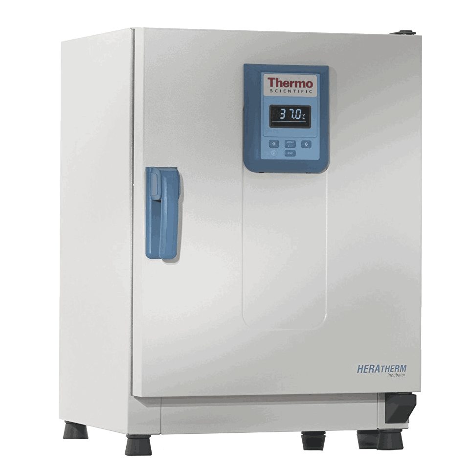 Thermo Scientific 51028064 Heratherm Incubator IGS100 4.1-cu ft | 117L